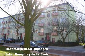De Rozemarijnstraat in Nijmegen, waar de familie Van Halen kortstondig in een naoorlogse tweekamerfalt woonde Foto: Humphrey de la Croix