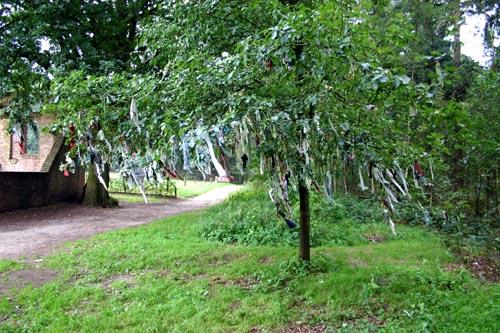 Het geloof in geesten en bovennatuur in Indonesië is eigenlijk niet anders dan het geloof in Gelderland in de zomereik bij de Sint Walrickkapel in Overasselt. De lapjes stof afbinden in de boom zou koorts voorkomen Foto: Pieke Hooghoff